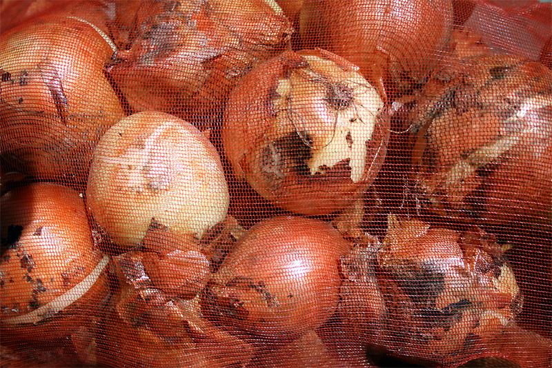 茨城産の玉葱